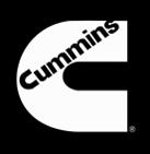 Partner-Cummings